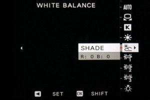 White balance shade setting